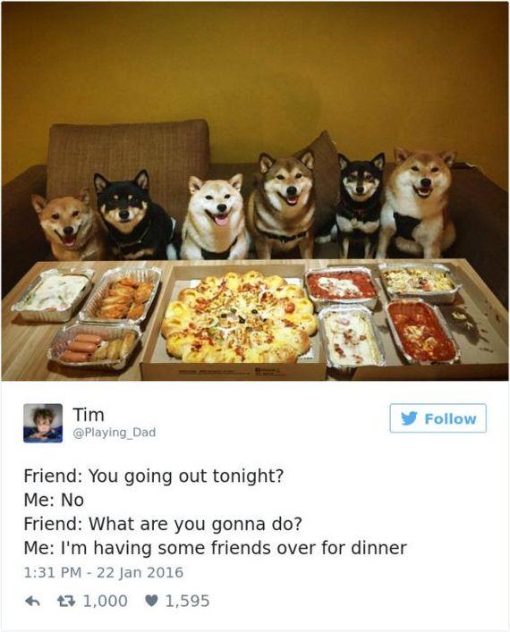05-funny_dog_tweets