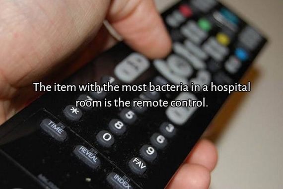 07-interesting_facts