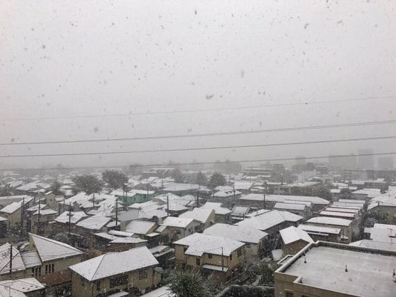 08-tokyo_snowed