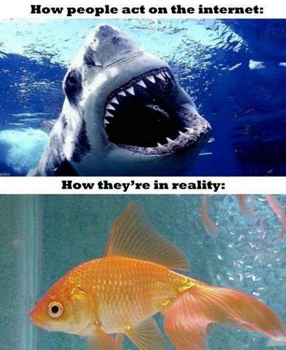 09-expectations-vs-reality