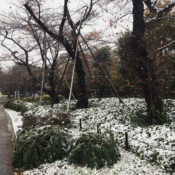10-tokyo_snowed