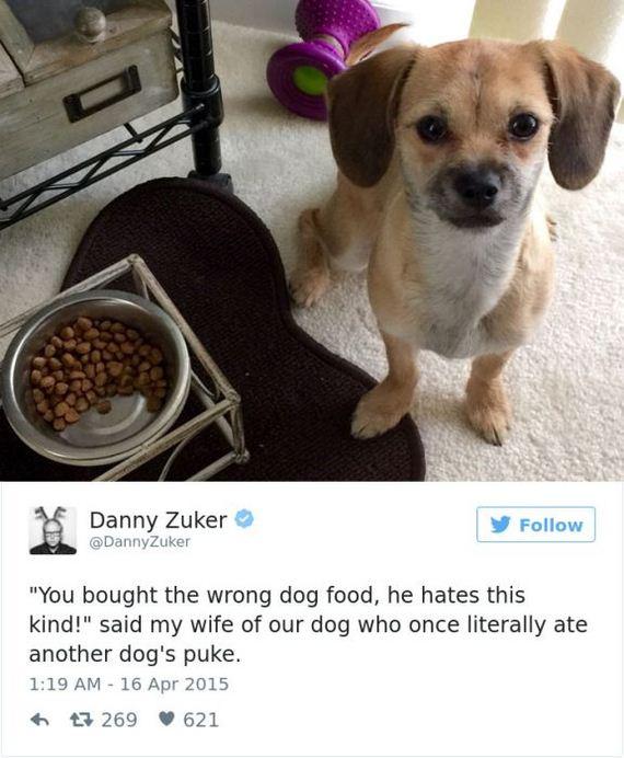 11-funny_dog_tweets