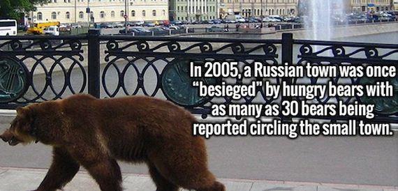 11-random-and-bizarre-facts
