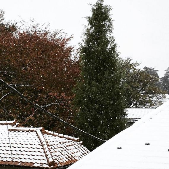 11-tokyo_snowed