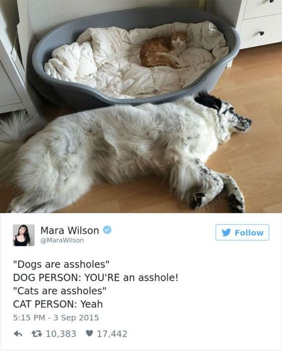 28-funny_dog_tweets