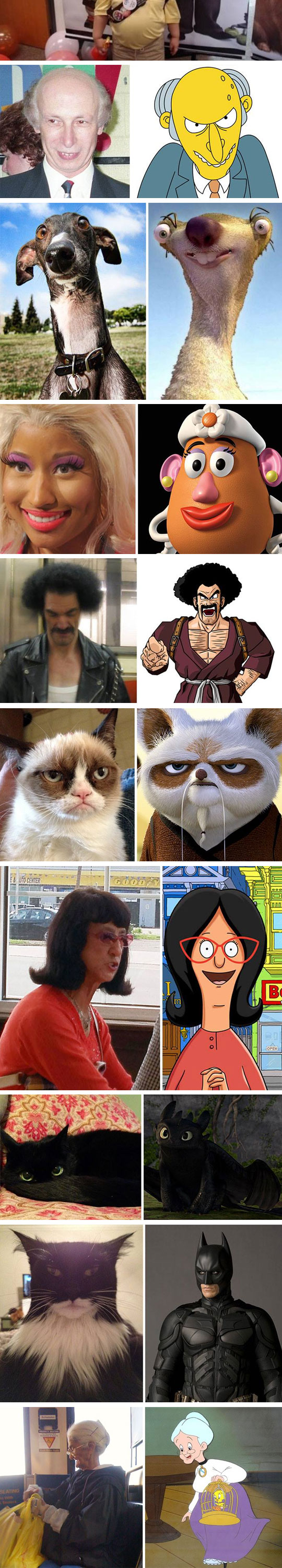 3-funny-batman-cat-lookalike-movies