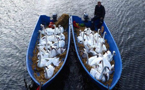30-unusual_boats