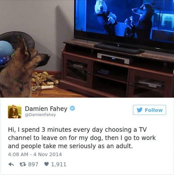 31-funny_dog_tweets
