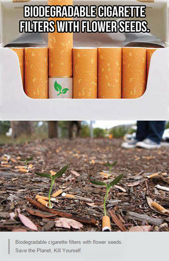 cool-biodegradable-cigarettes-filters-seed