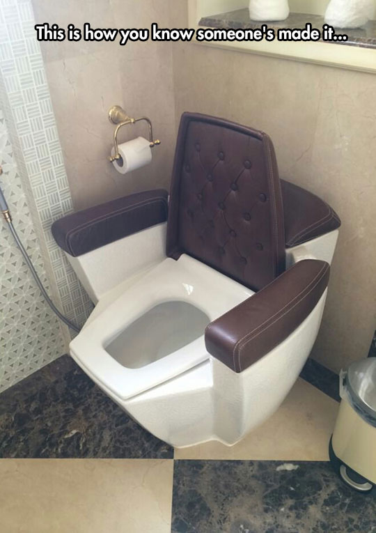 cool-classy-toilet-leather-arm-rest