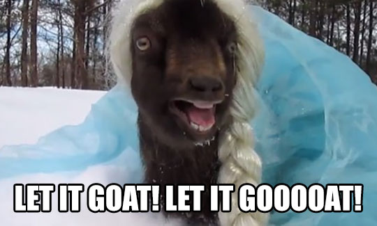 cool-goat-frozen-elsa-costume-snow