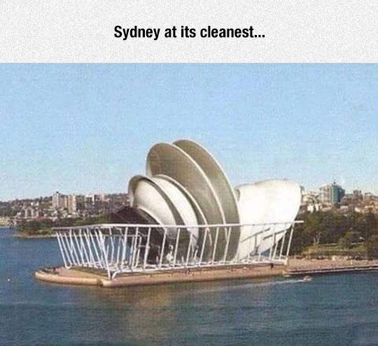 funny-sydney-dish-clean
