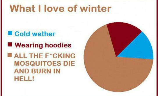 funny-winter-pie-chart-mosquitoes