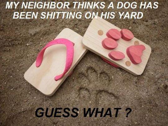 funny-flip-flops-dog-shape-paw