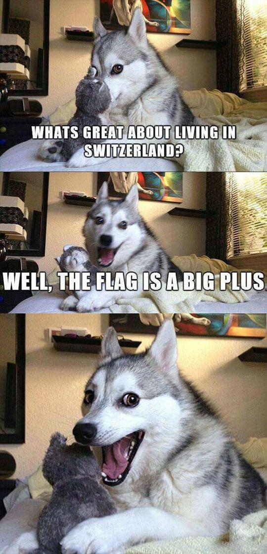 funny-joke-husky-dog-flag