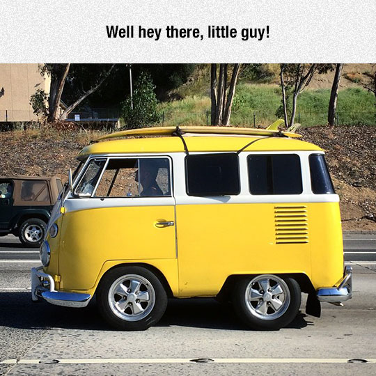 funny-little-car-volkswagen-van
