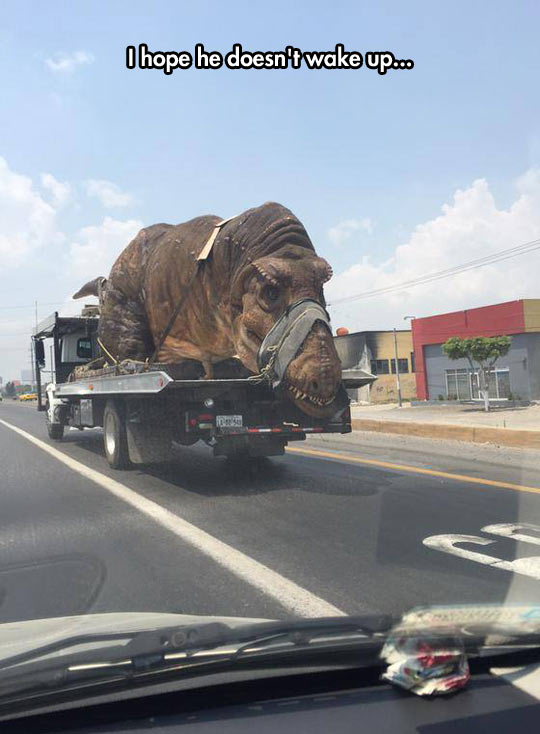 funny-street-truck-big-dinosaur-sleeping