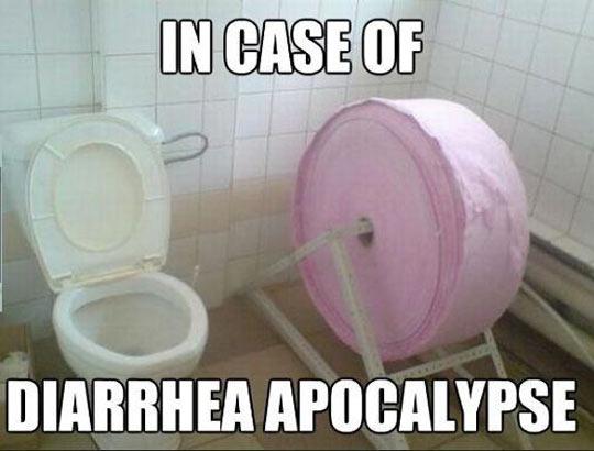 funny-toilet-paper-giant-bathroom