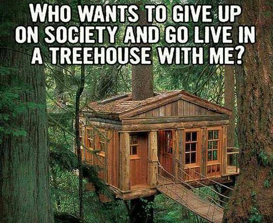 tree-house-cabin-wood