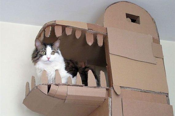 01-cardboard_cat