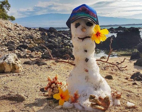 01-snow_hawai