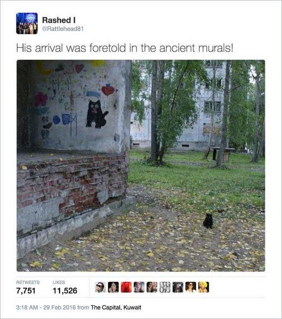02-funny_cat_tweet
