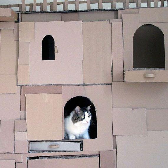 04-cardboard_cat
