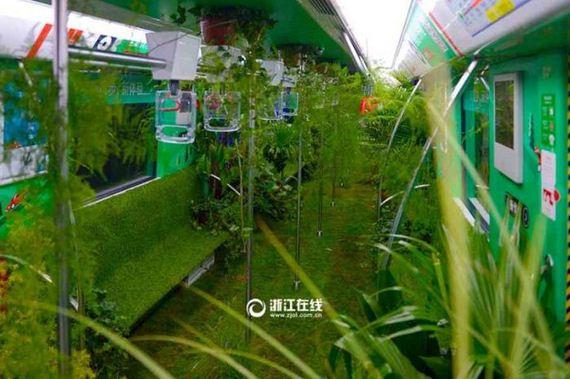 04-china_green_metro