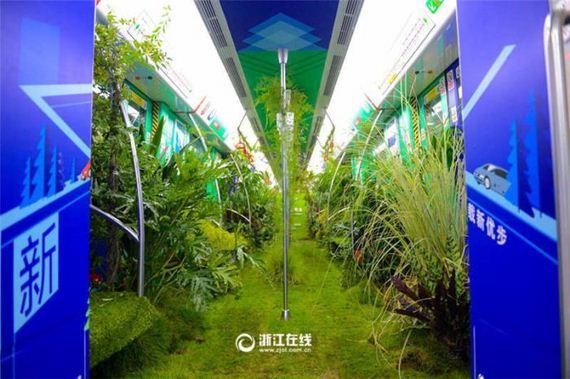 05-china_green_metro