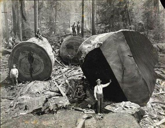 10-historical-photos