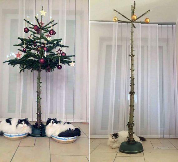 13-xmas-tree