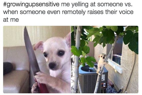 27-memes_that_will_make_you_laugh