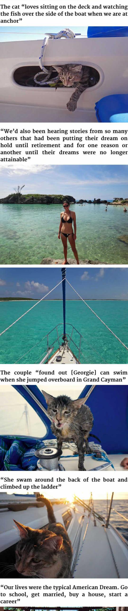 3funny-couple-quit-job-travel-cat-sea