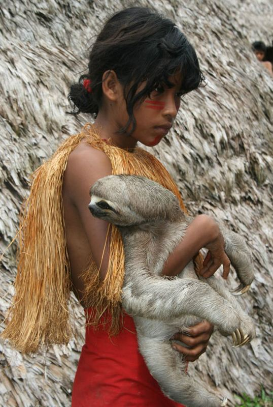cute-amazonian-girl-pet-sloth