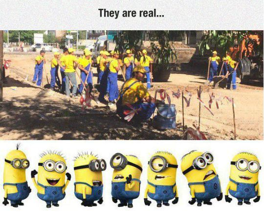 funny-minions-workers-lookalike-real