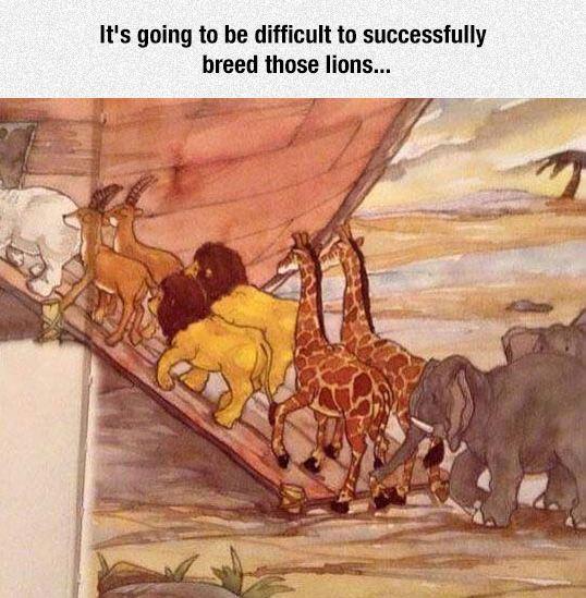 funny-noah-ark-male-lions