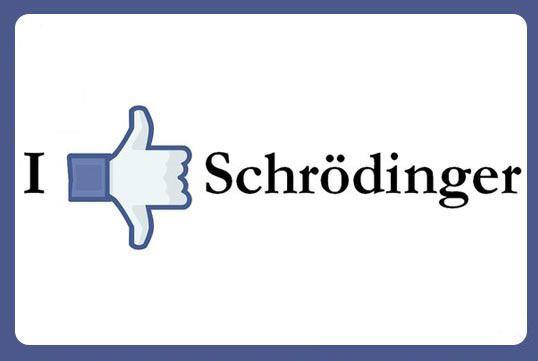 funny-schrodinger-hand-like-not