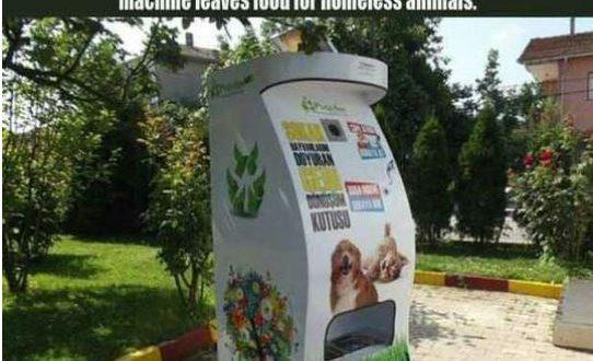 funny-turkish-company-plastic-bottle-animal-food0