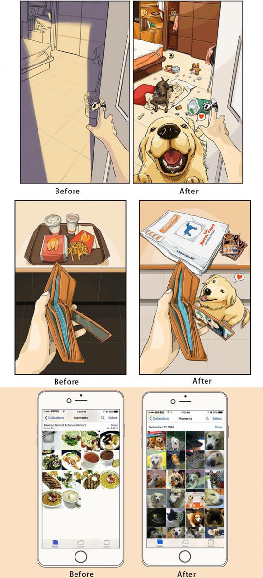 funny-comic-before-after-dog-house