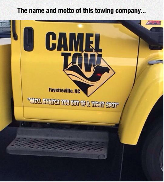 funny-company-towing-name-pun-camel