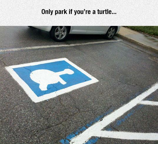 funny-handicap-parking-space-logo-turtle-paint