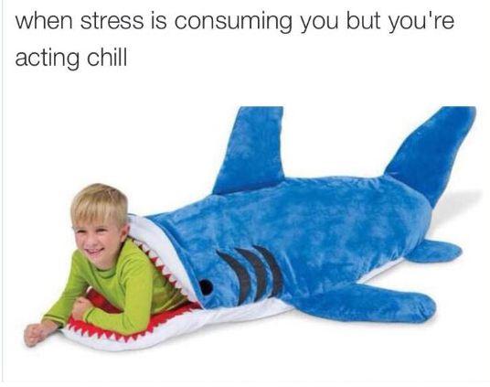 funny-kid-shark-acting-chill