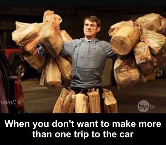 funny-man-bags-one-trip-car