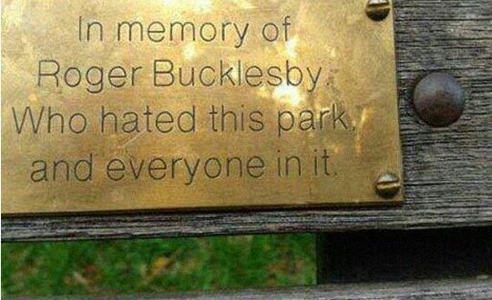 funny-park-bench-memory