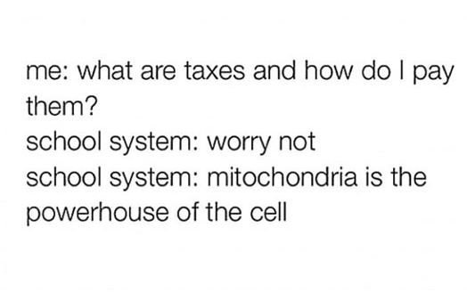 funny-quote-school-system-taxes