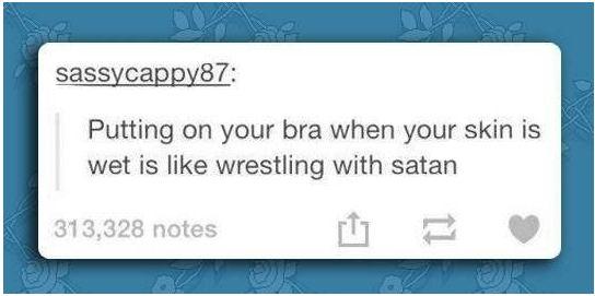 funny-wrestling-against-satan-bra-wet