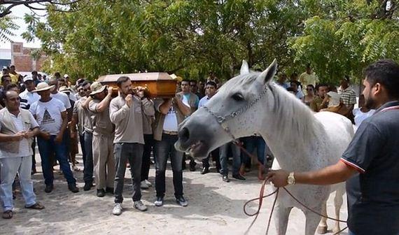 01-heartbreaking_horse