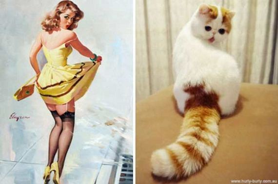 07-pinup_girl_cats