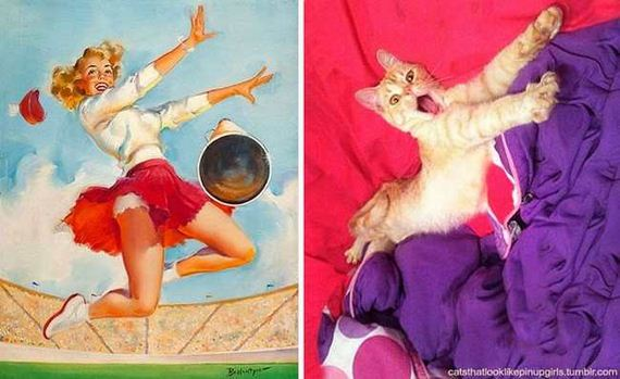 10-pinup_girl_cats