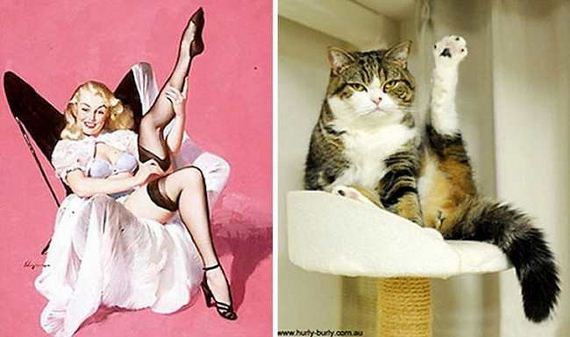 14-pinup_girl_cats